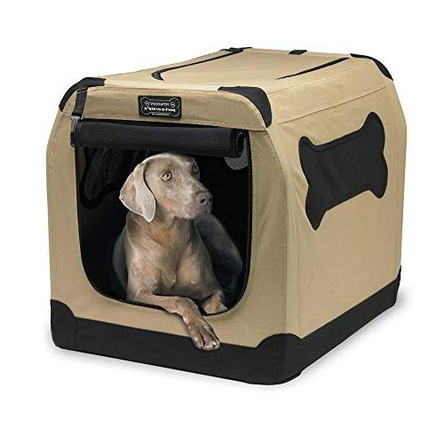 Petnation Indoor and Outdoor for