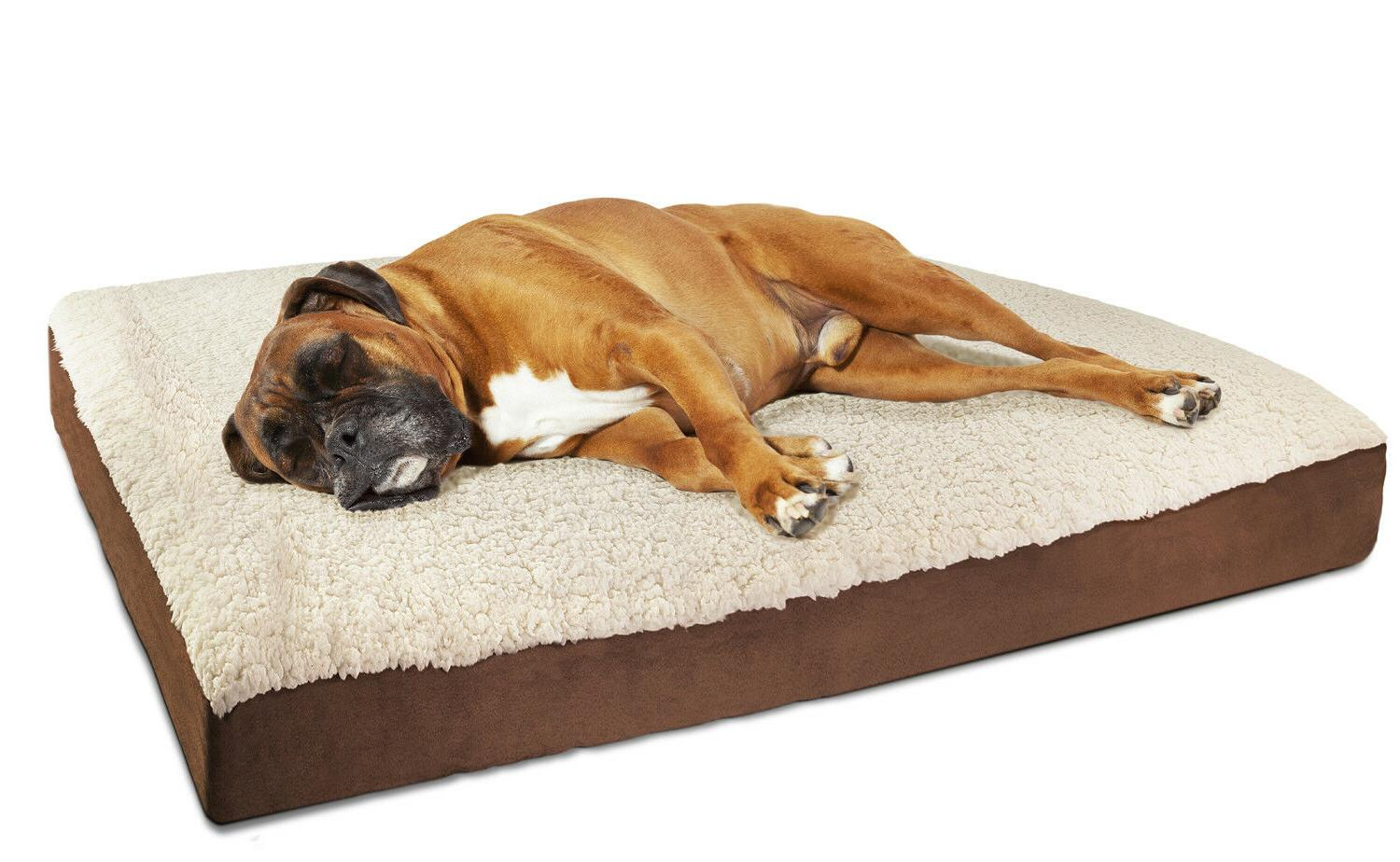 Orthopedic Bed Lounger Deluxe Crate Foam Large